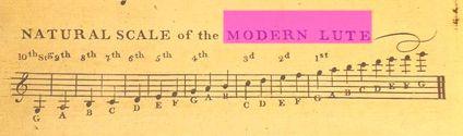 modernlutescals